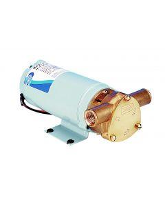 Bronze body turbine pump 2640 l/h