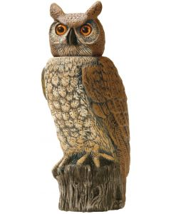 Owl with pivoting head